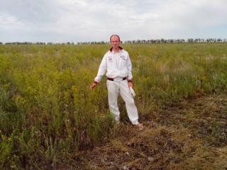 Евгений на поле донника