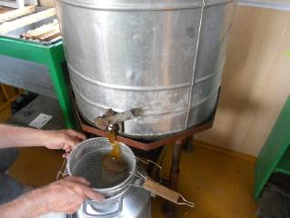 Медосбор Аркаимского степного меда с нашей пасеки
