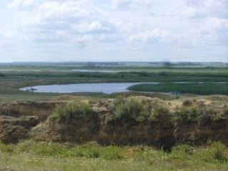 Вид с Синташтинского кургана на реку